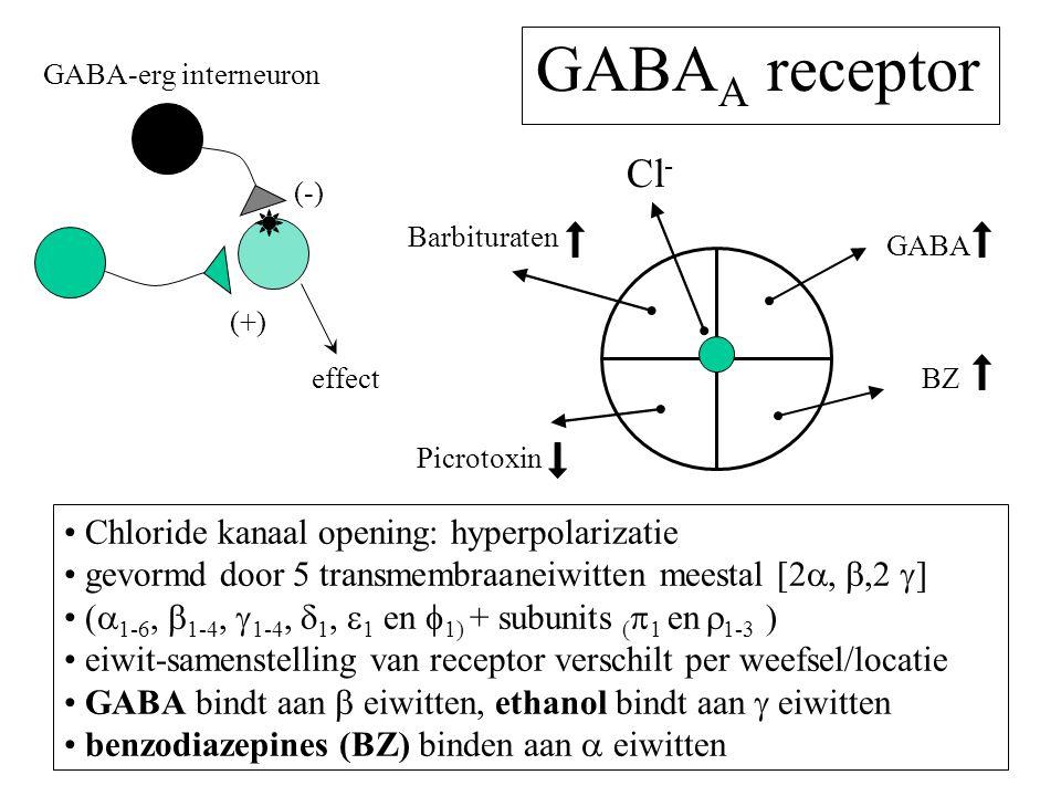 GABAA receptor Cl- Chloride kanaal opening: hyperpolarizatie