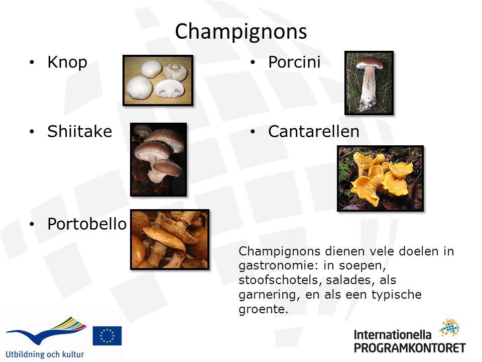 Champignons Knop Shiitake Portobello Porcini Cantarellen