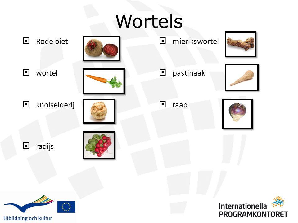 Wortels Rode biet wortel knolselderij radijs mierikswortel pastinaak