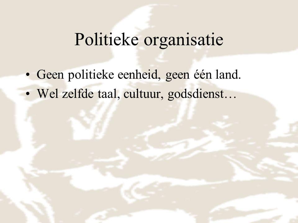 Politieke organisatie