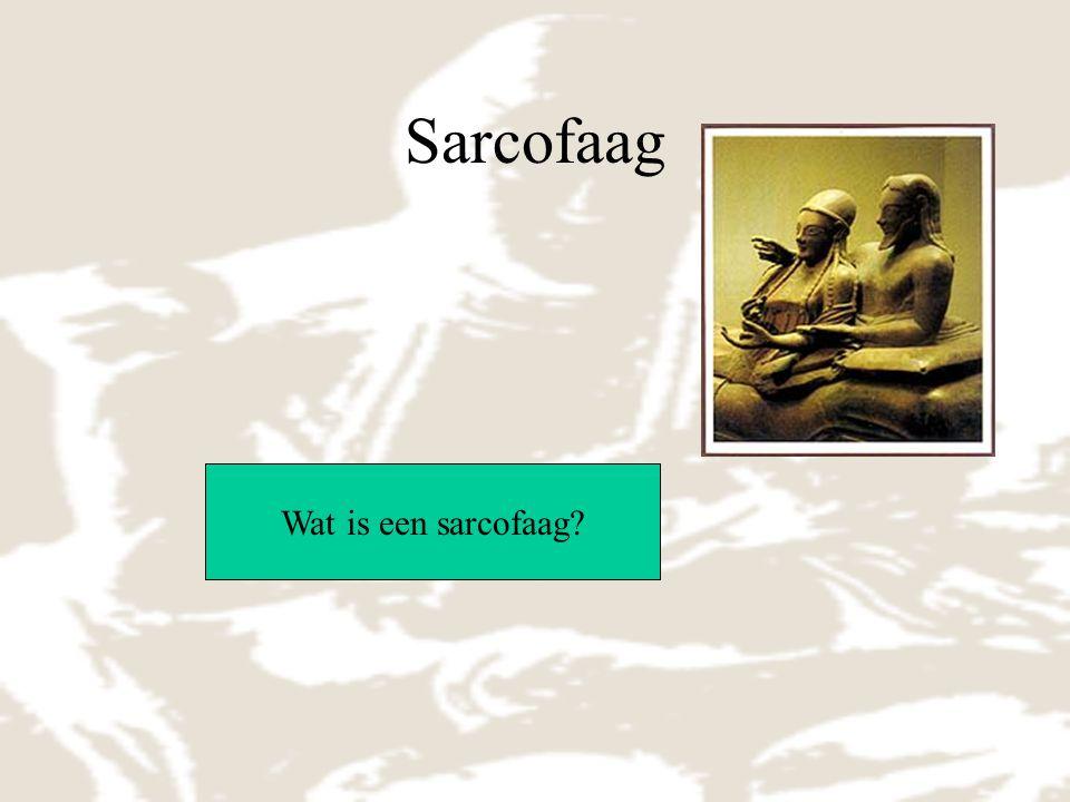 Sarcofaag Wat is een sarcofaag