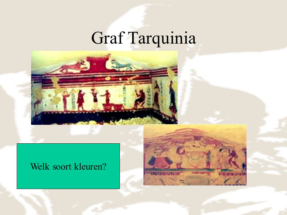 Graf Tarquinia Welk soort kleuren