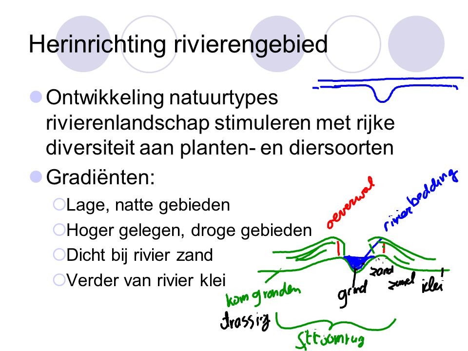 Herinrichting rivierengebied