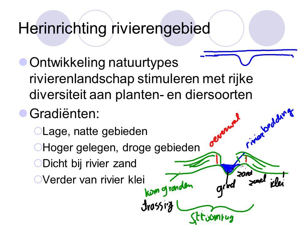 Herinrichting rivierengebied