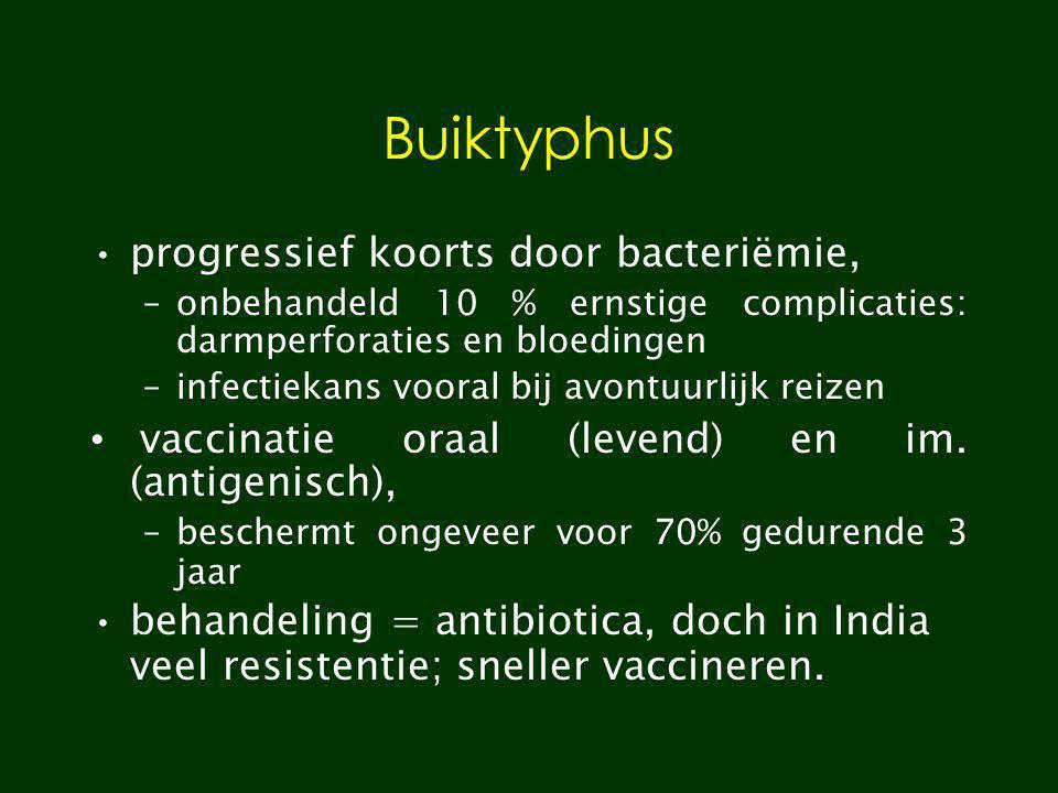 Buiktyphus progressief koorts door bacteriëmie,