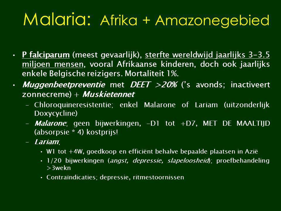 Malaria: Afrika + Amazonegebied