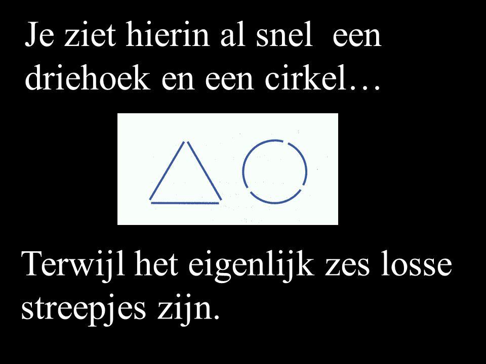Je ziet hierin al snel een driehoek en een cirkel…