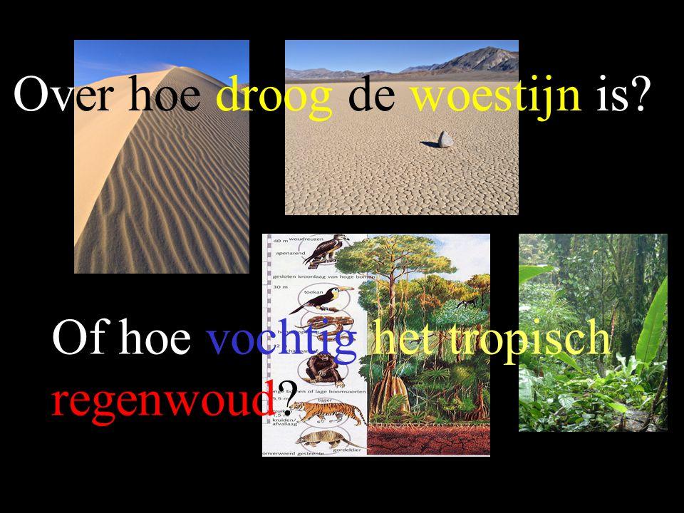 Over hoe droog de woestijn is