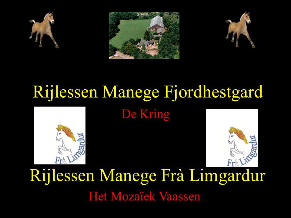 Rijlessen Manege Fjordhestgard
