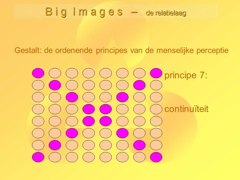 principe 7: continuïteit