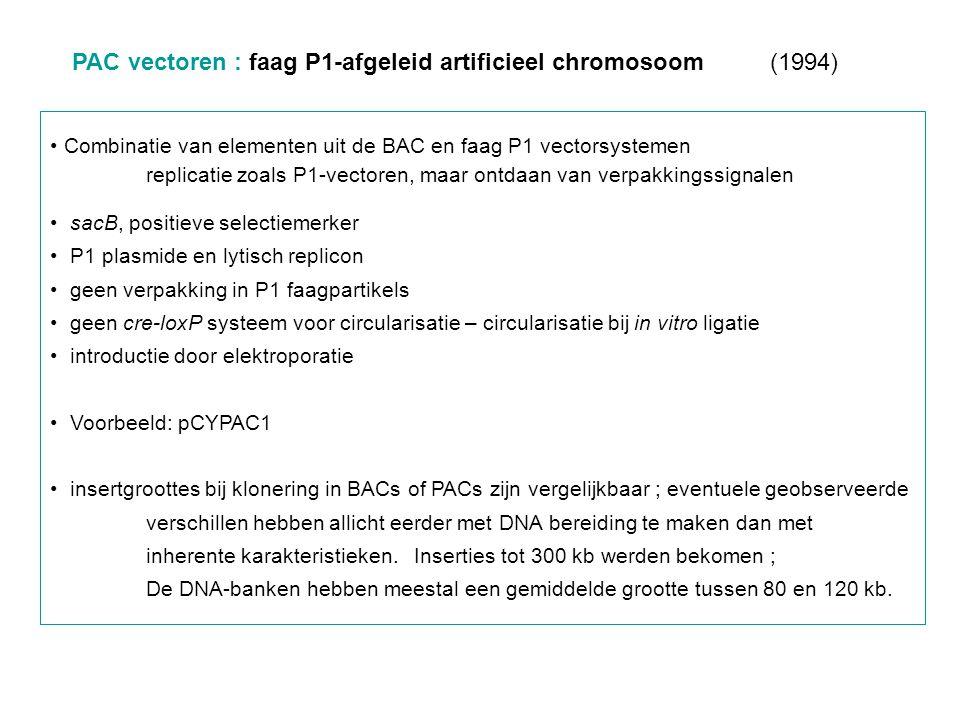 PAC vectoren : faag P1-afgeleid artificieel chromosoom (1994)