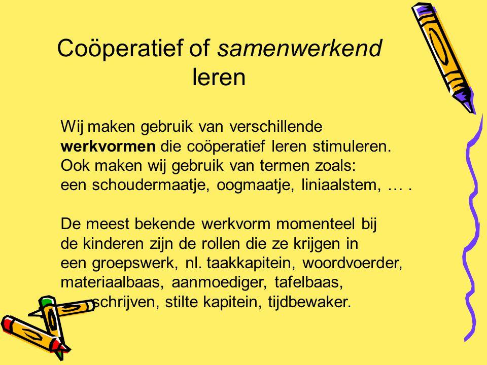 Coöperatief of samenwerkend leren