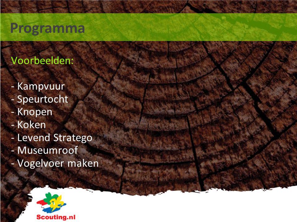 Programma Voorbeelden: - Kampvuur - Speurtocht - Knopen