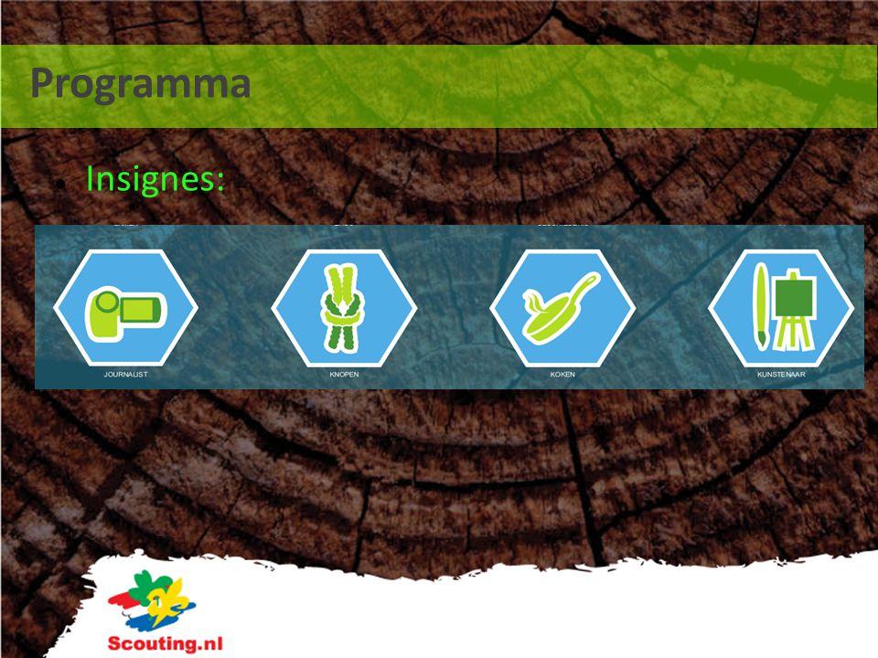 Programma Insignes: as