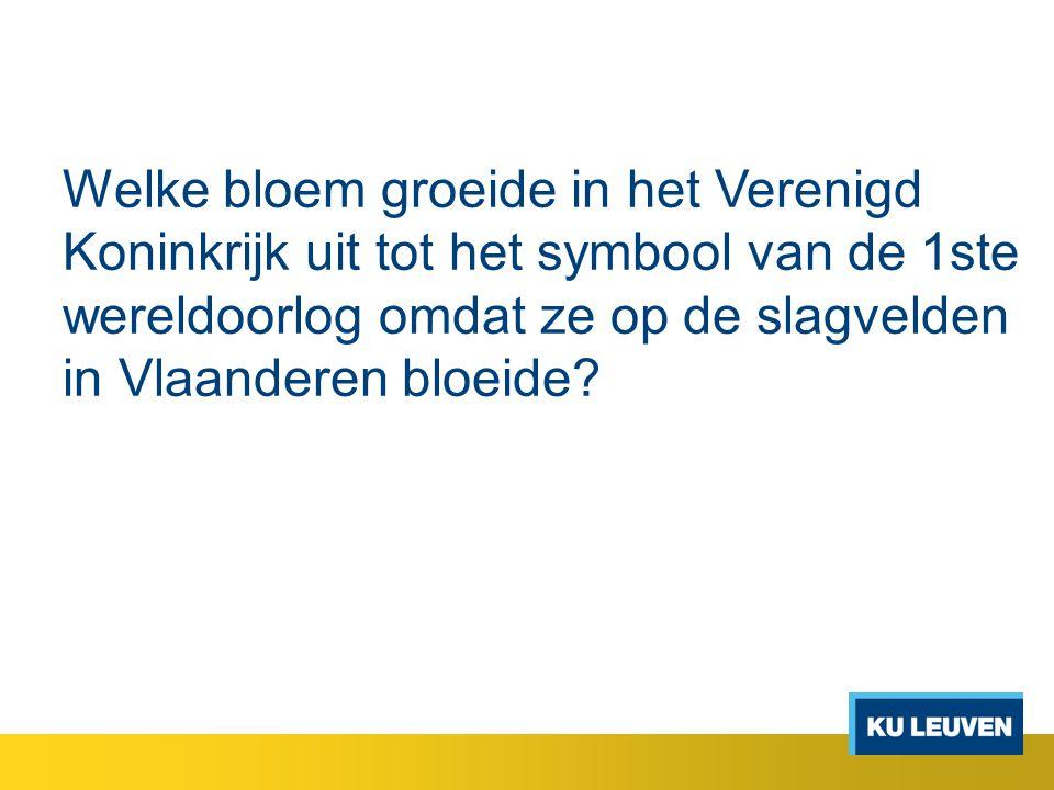 Welke bloem groeide in het Verenigd Koninkrijk uit tot het symbool van de 1ste wereldoorlog omdat ze op de slagvelden in Vlaanderen bloeide