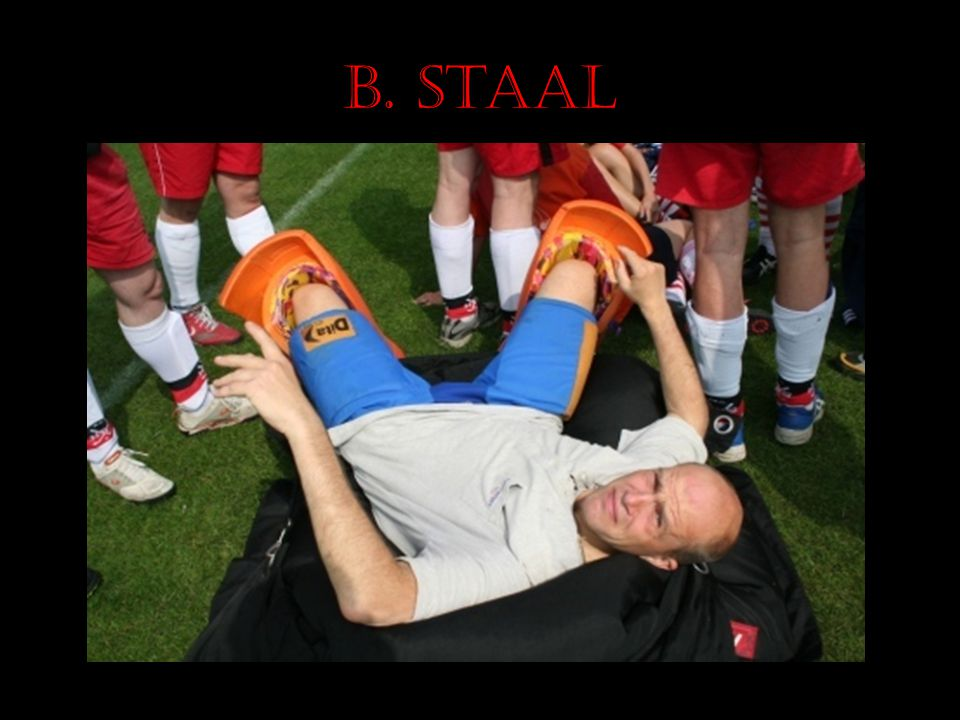 B. Staal