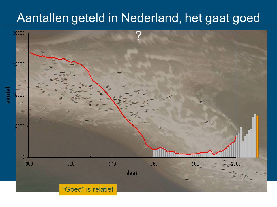 Aantallen geteld in Nederland, het gaat goed