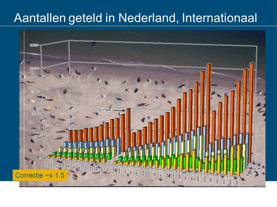 Aantallen geteld in Nederland, Internationaal