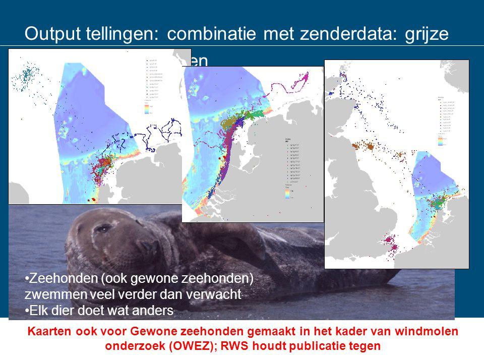 Output tellingen: combinatie met zenderdata: grijze zeehondenzeehonden