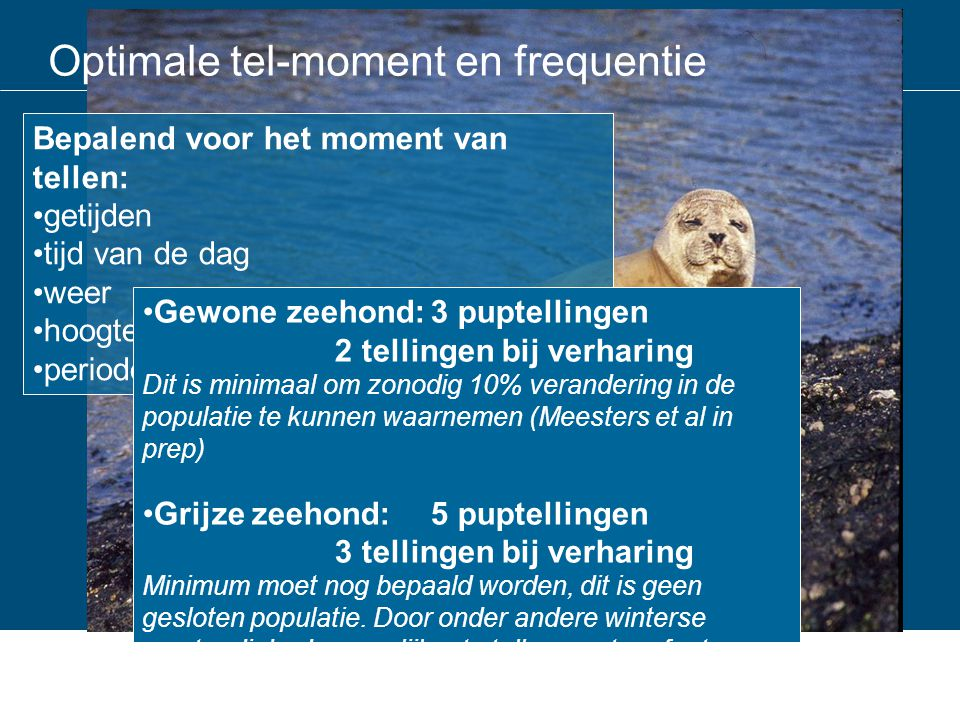 Optimale tel-moment en frequentie