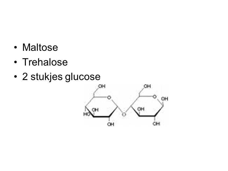 Maltose Trehalose 2 stukjes glucose