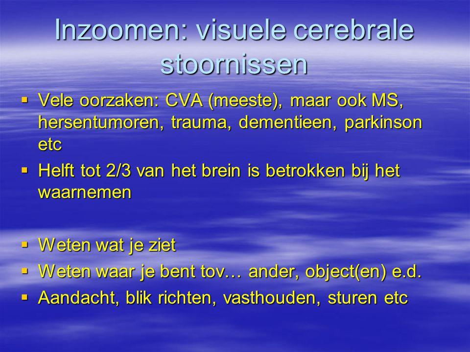 Inzoomen: visuele cerebrale stoornissen