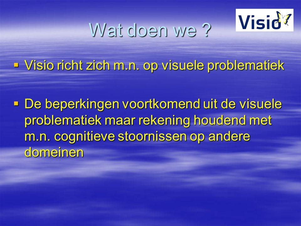 Wat doen we Visio richt zich m.n. op visuele problematiek