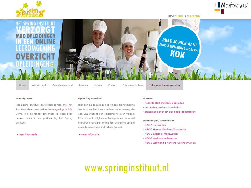 www.springinstituut.nl
