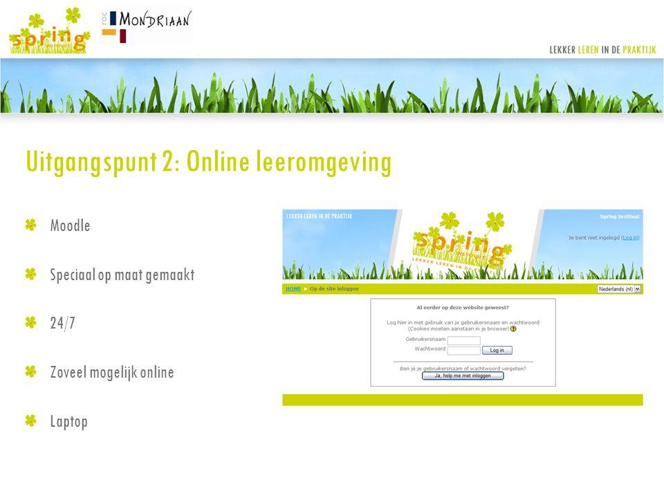 Uitgangspunt 2: Online leeromgeving
