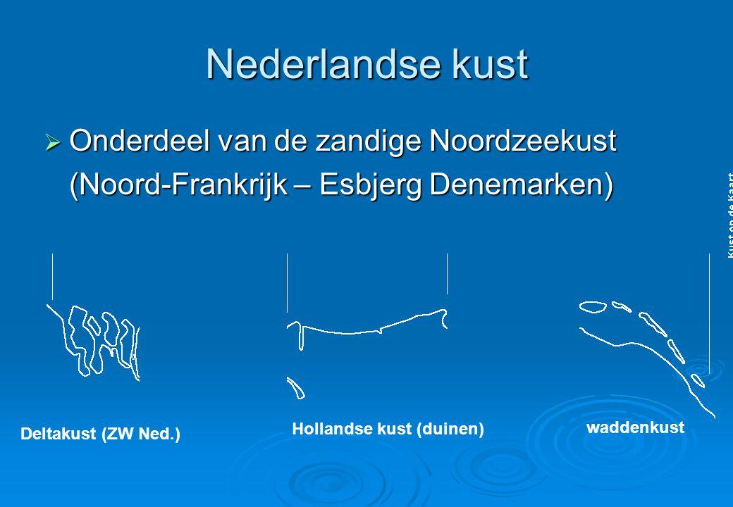 Nederlandse kust Onderdeel van de zandige Noordzeekust