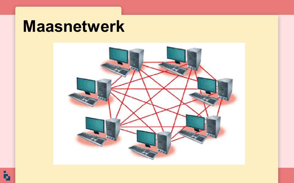 Maasnetwerk