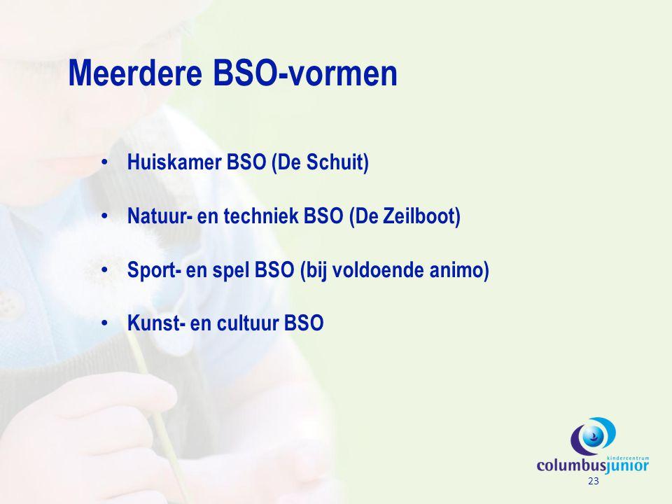 Meerdere BSO-vormen Huiskamer BSO (De Schuit)