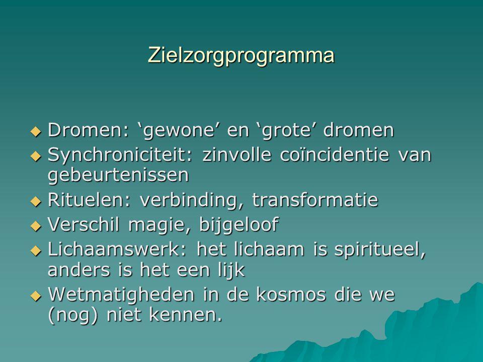 Zielzorgprogramma Dromen: 'gewone' en 'grote' dromen