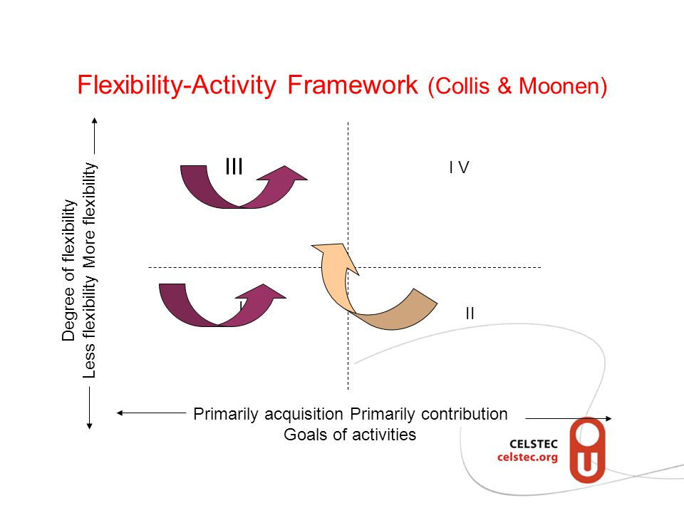 Flexibility-Activity Framework (Collis & Moonen)
