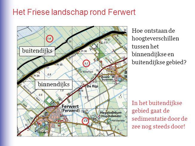Het Friese landschap rond Ferwert