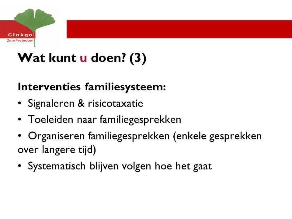 Wat kunt u doen (3) Interventies familiesysteem: