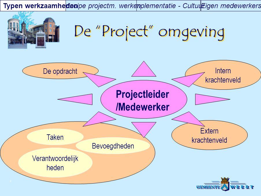 De Project omgeving Projectleider/Medewerker Intern krachtenveld