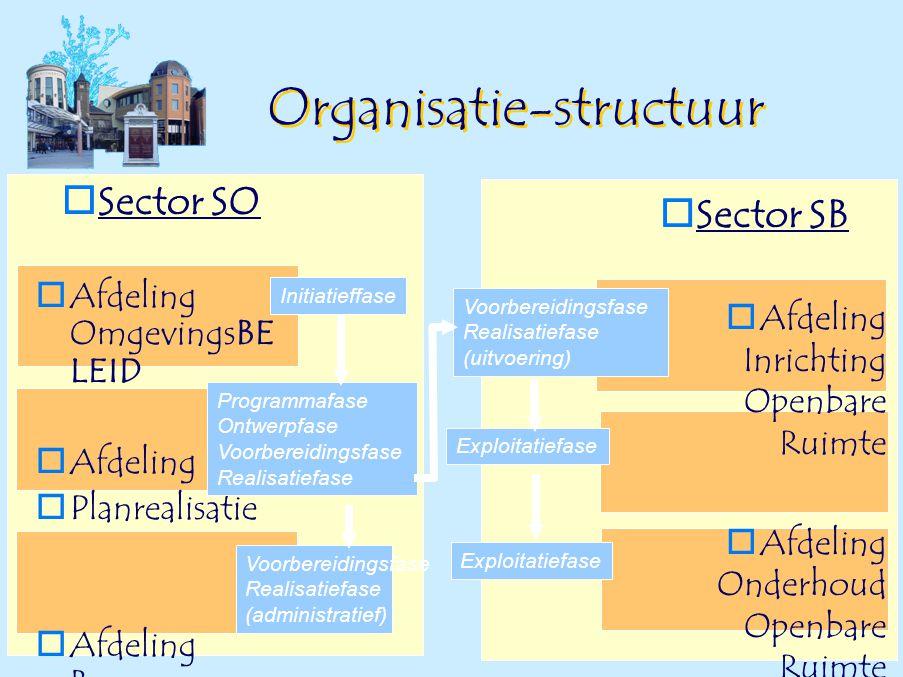 Organisatie-structuur