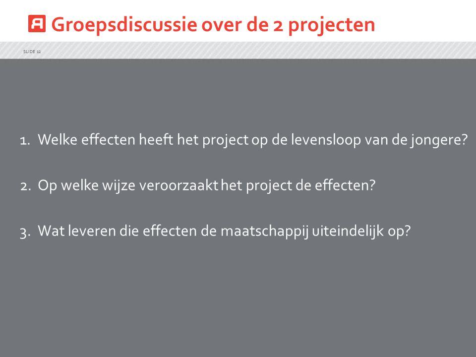 Groepsdiscussie over de 2 projecten