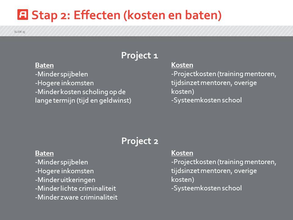 Stap 2: Effecten (kosten en baten)