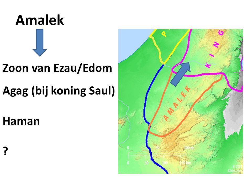 Amalek Zoon van Ezau/Edom Agag (bij koning Saul) Haman