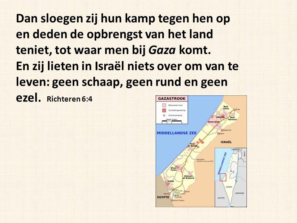 Dan sloegen zij hun kamp tegen hen op en deden de opbrengst van het land teniet, tot waar men bij Gaza komt.