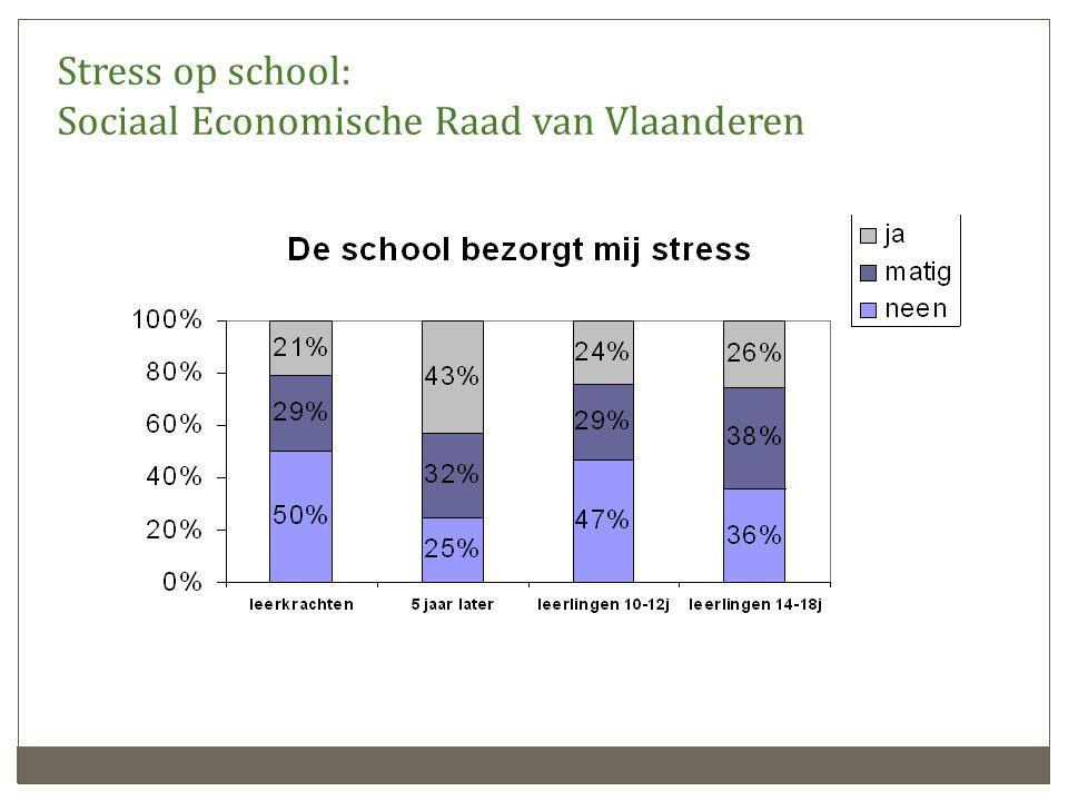 Stress op school: Sociaal Economische Raad van Vlaanderen
