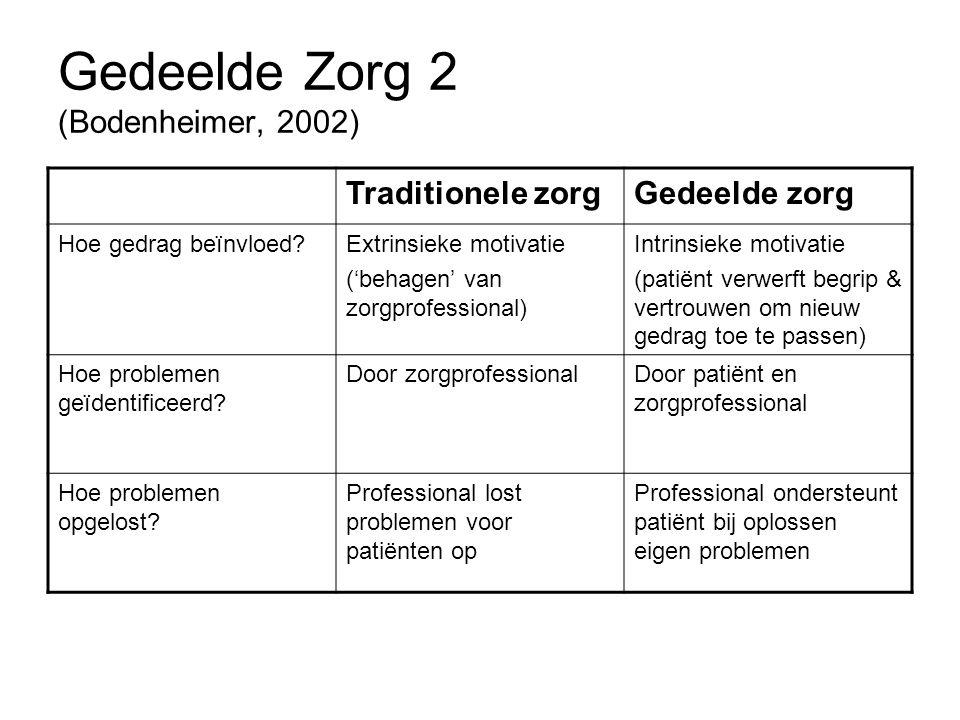 Gedeelde Zorg 2 (Bodenheimer, 2002)
