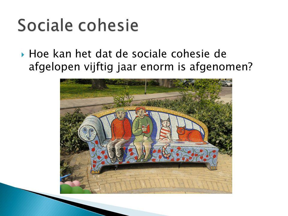 Sociale cohesie Hoe kan het dat de sociale cohesie de afgelopen vijftig jaar enorm is afgenomen