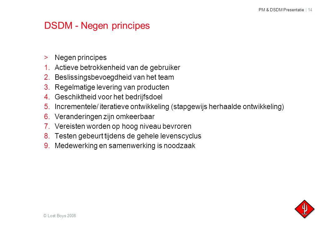 DSDM - Negen principes Negen principes