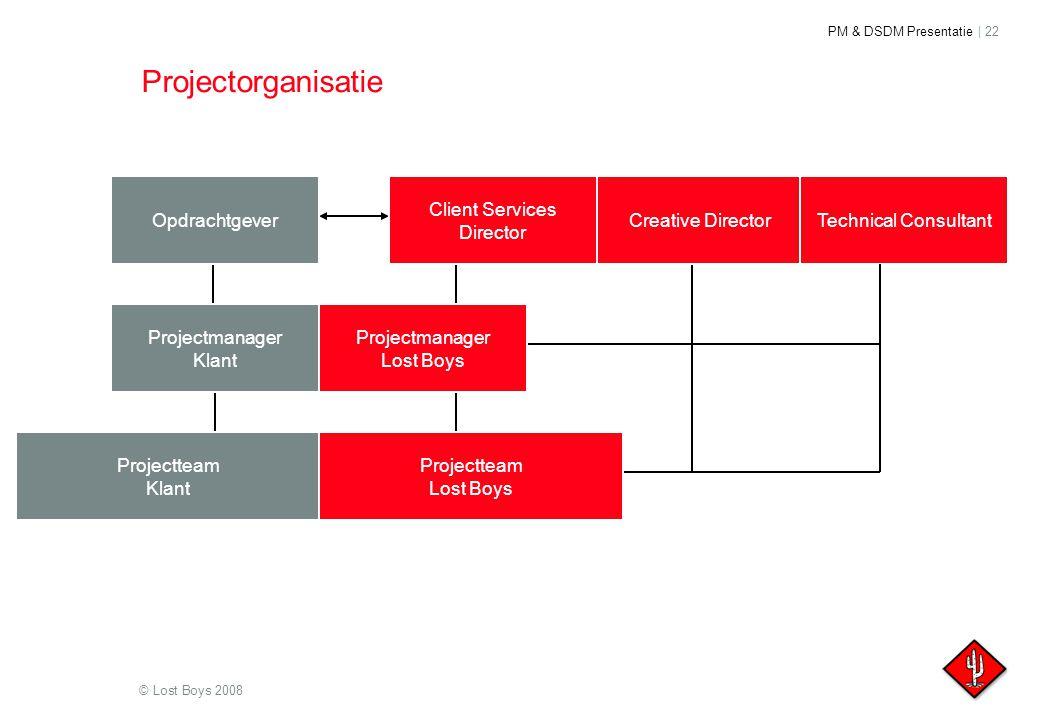 Projectorganisatie Opdrachtgever Client Services Director