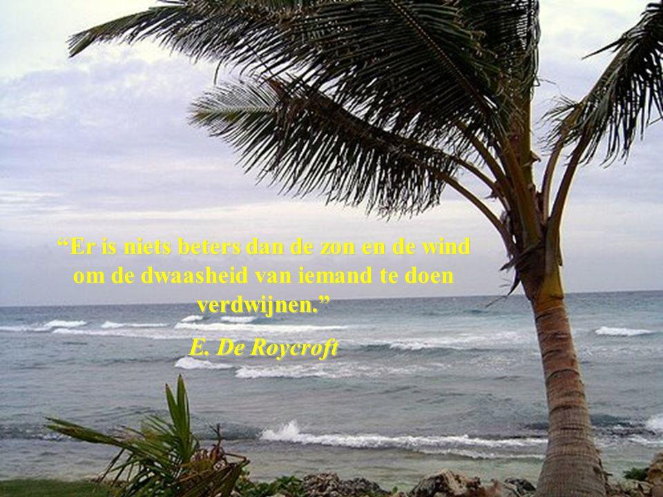 Er is niets beters dan de zon en de wind om de dwaasheid van iemand te doen verdwijnen.