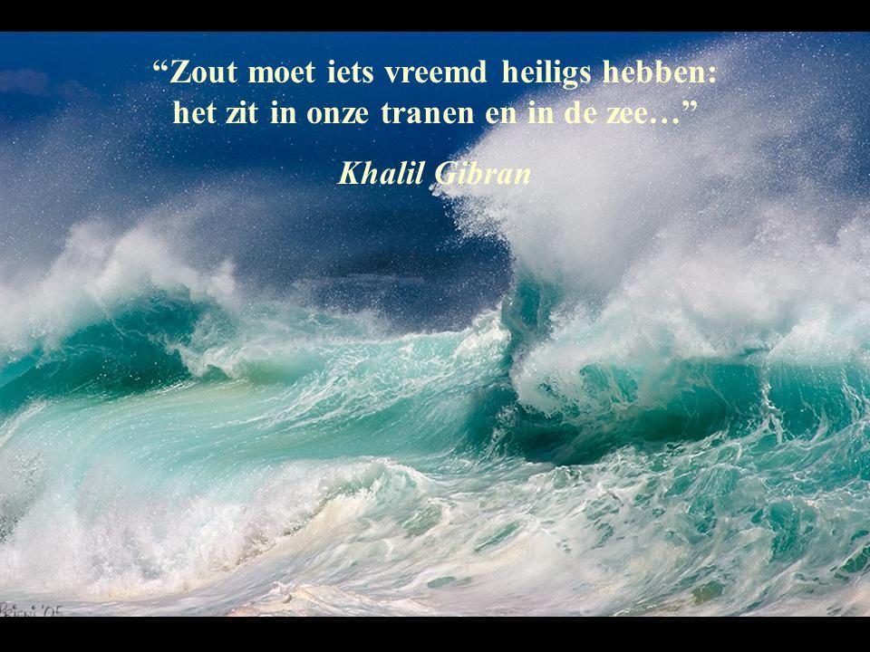 Zout moet iets vreemd heiligs hebben: het zit in onze tranen en in de zee…
