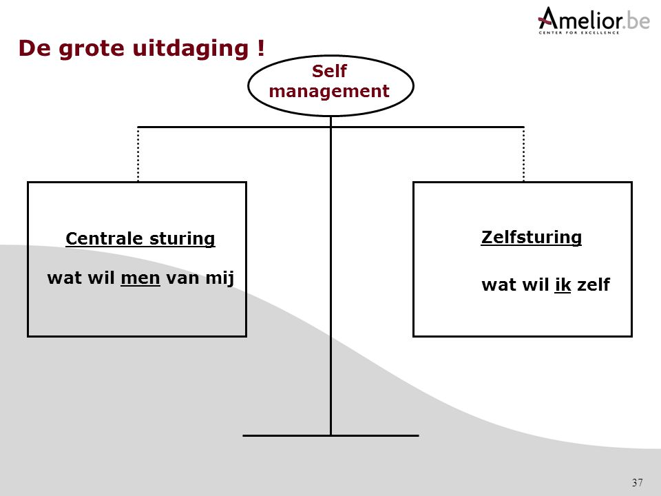 De grote uitdaging ! Self management Centrale sturing